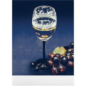 Obrázek Maturitní skleničky BLACK SALUTE